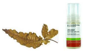 масло вакамэ