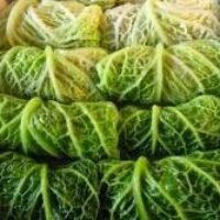 Голубцы из савойской капусты