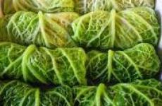 Голубцы из савойской капусты.