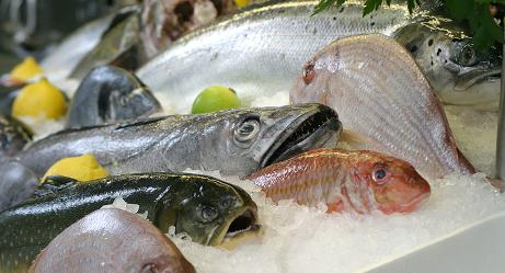 рыба источник омега-3