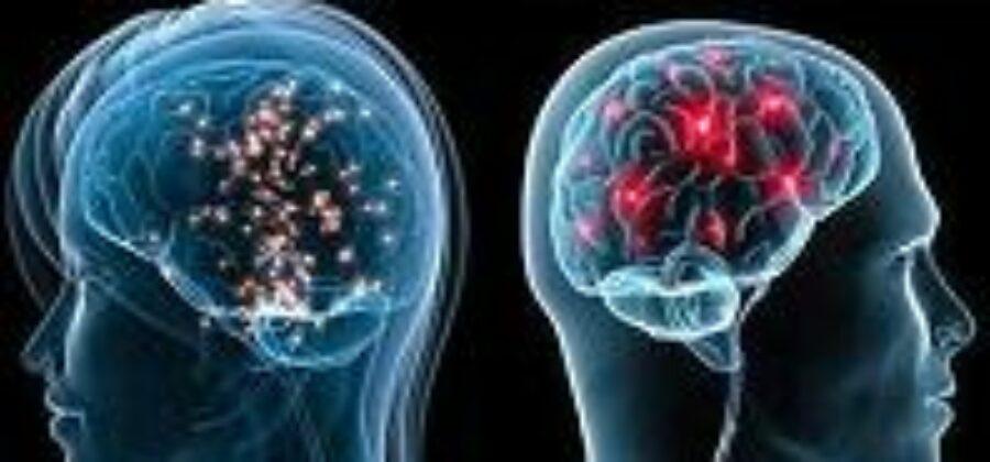 Мозг мужчины и женщины— равенство или различие