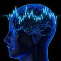 У вас мужской мозг— пройдите тест и узнайте кто вы