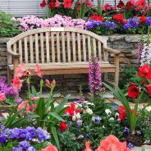 Уход за цветами в саду.