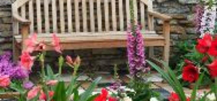 Уход за цветами в саду