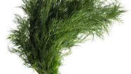 Как замораживать зелень на зиму.