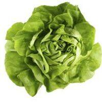 Польза зеленого салата, молодо-зелено