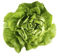 польза зеленого салата