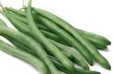 Зеленая стручковая фасоль-любимый овощ.