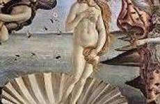 Что такое афродизиак?