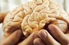 Как улучшить работу мозга, просто и эффективно!