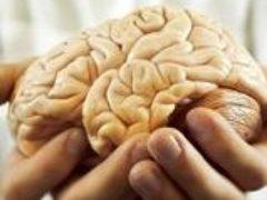 Как улучшить работу мозга— просто и эффективно