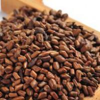 Что такое китайские кофейные бобы