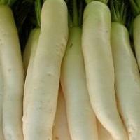 Салат из дайкона— восточной редьки