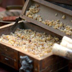 Что такое ладан— где добывают волшебную смолу