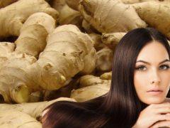 Как  имбирный  шампунь  спасает волосы от выпадения