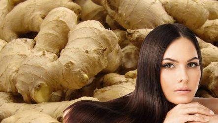 Как  имбирный  шампунь  спасает волосы от выпадения.