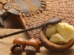 Масло ши для волос— статья для заботящихся о красоте шевелюры