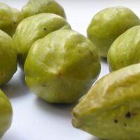 Что такое Харитаки— волшебный индийский орех