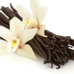 Особенно благотворно ваниль действует на женщин— аромат ванили пробуждает ощущение счастья