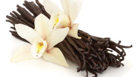 Особенно благотворно ваниль действует на женщин. Аромат ванили пробуждает чувство радости и счастья.