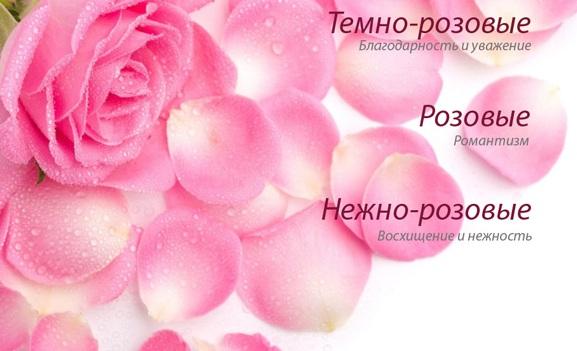 Что значат розовые розы