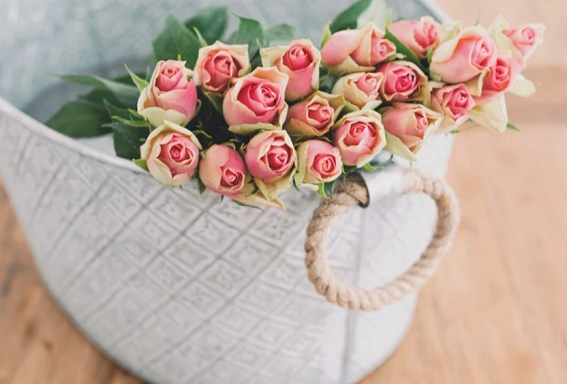 значение розовых роз
