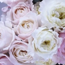 Значение цвета роз при дарении букета
