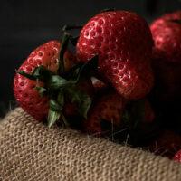 Уход за клубникой весной— обработка от болезней и вредителей